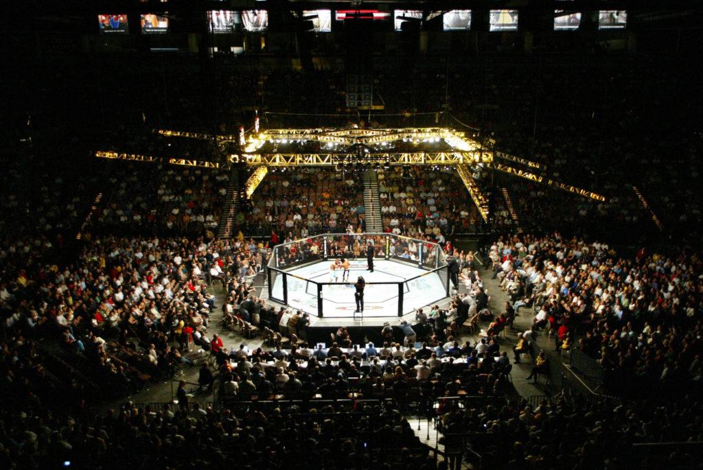 show MMA octogone ufc