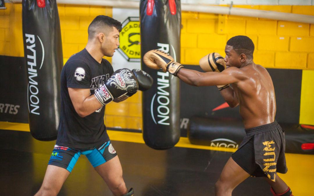 5 choses à savoir pour devenir combattant professionnel de MMA